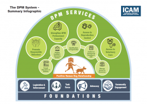 DPM system infographic